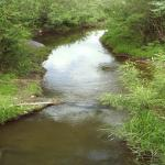 річка Риловиця
