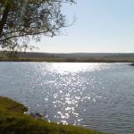 річка Свинарка