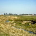 річка Війниця